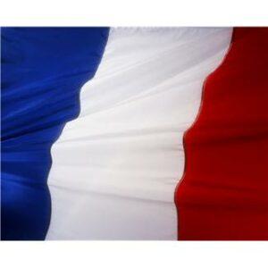 französisch englisch Übersetzungsbüro Fachübersetzer